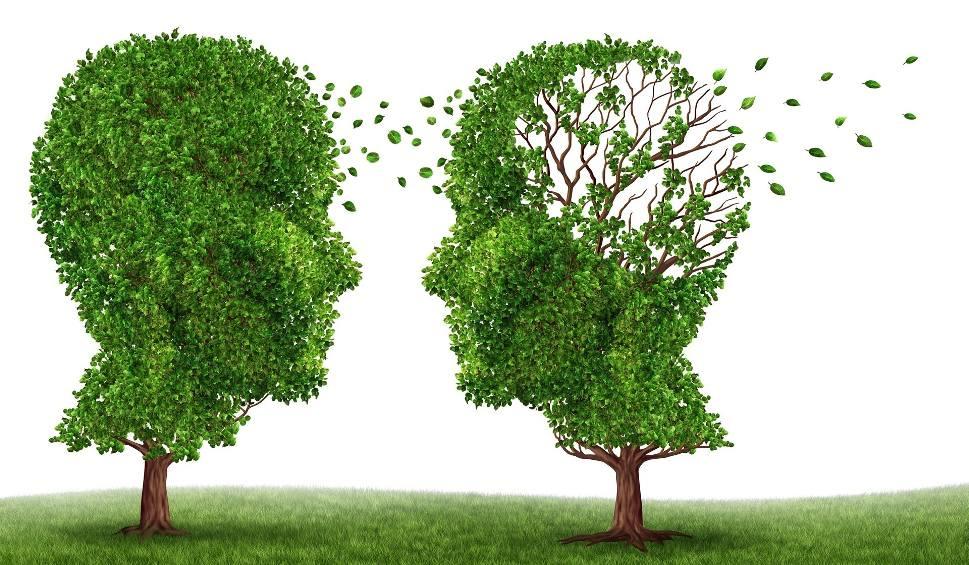 choroby osób starszych, choroby układu nerwowego, demencja, parkinson, alzheimer