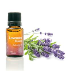 Essential Oil - Lavender Nature's Sunshine NSP Polska