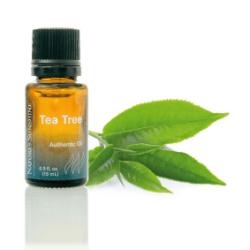 Essential Oil - Tea Tree Nature's Sunshine NSP Polska
